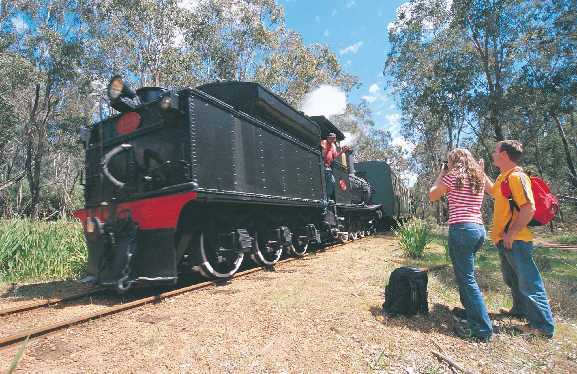 Hotham-Valley-Steam-Train Dwellingup