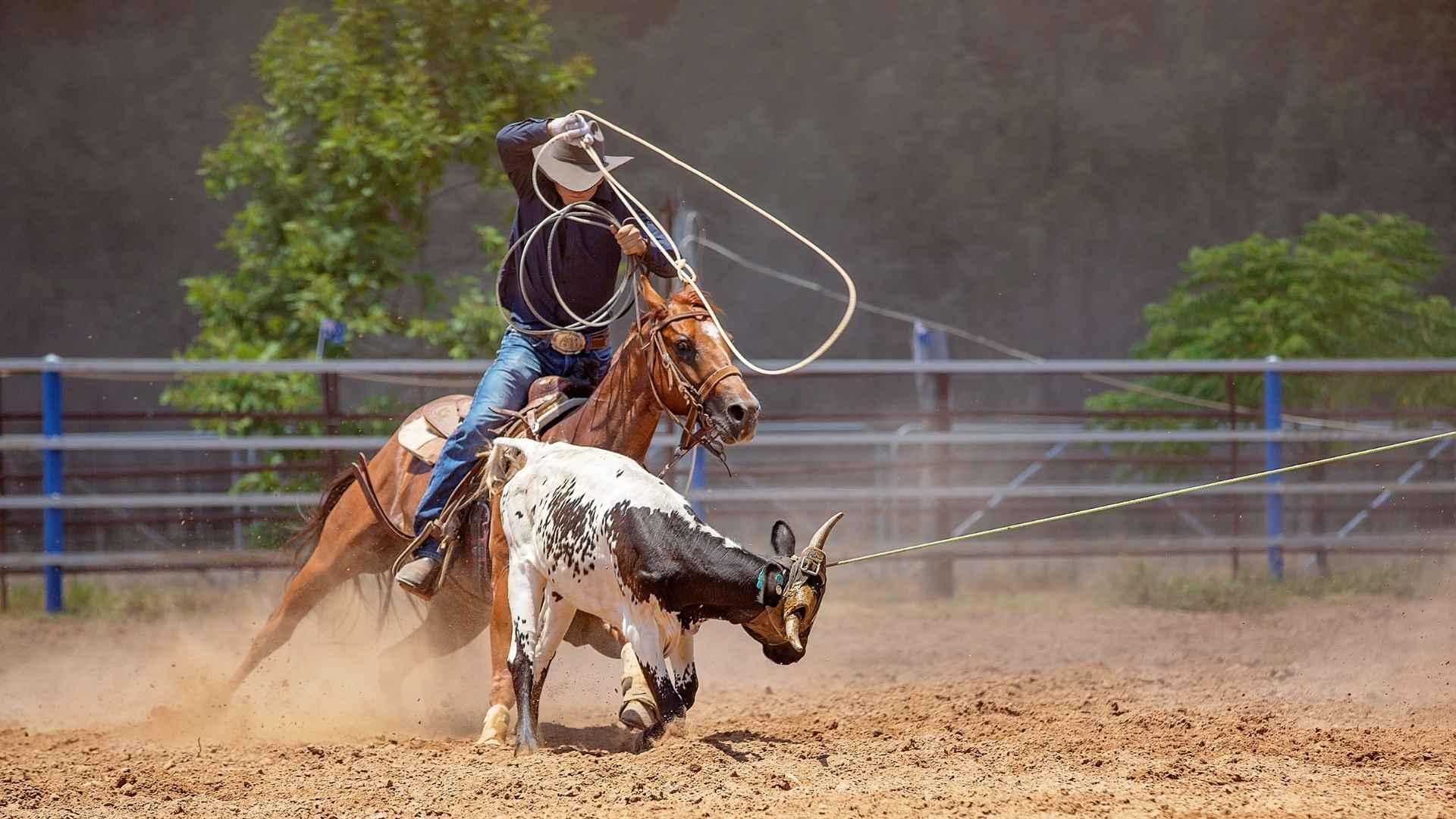 rodeo-mandurah-ashley-black